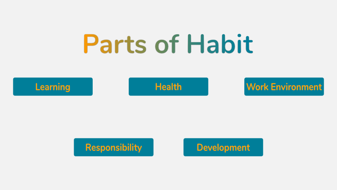 Role of habits in the definition of success.